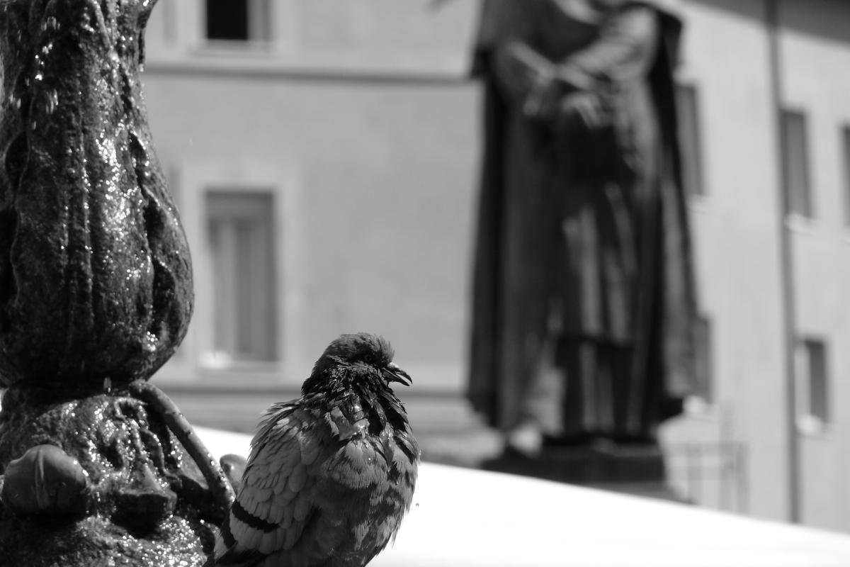 Corruzione in Italia - dal blog terra matta di marco pellegrini